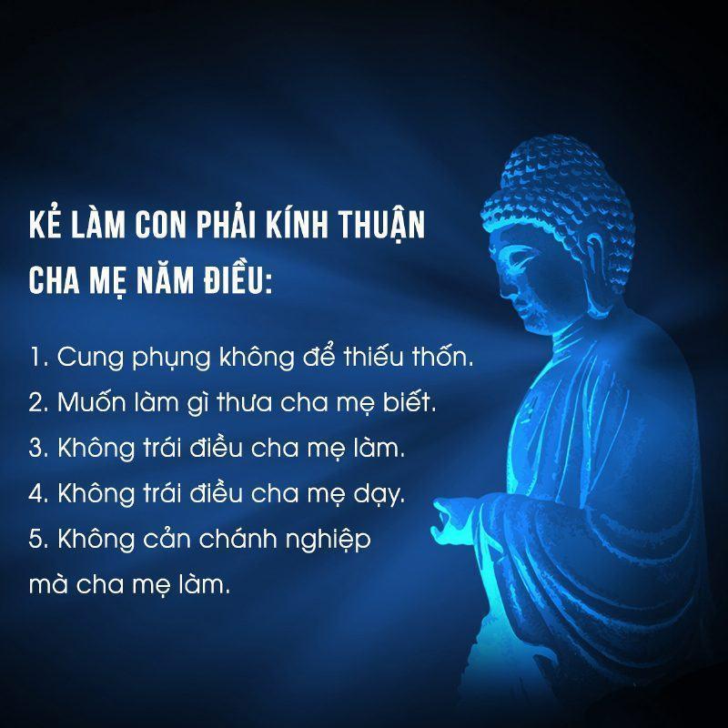Trích kinh Phật dạy về Hiếu Hạnh   Chùa A Di Đà