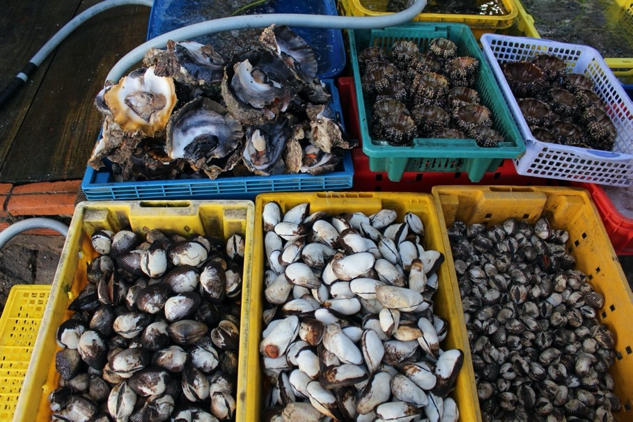 các loại hải sản ở đảo Nam Du
